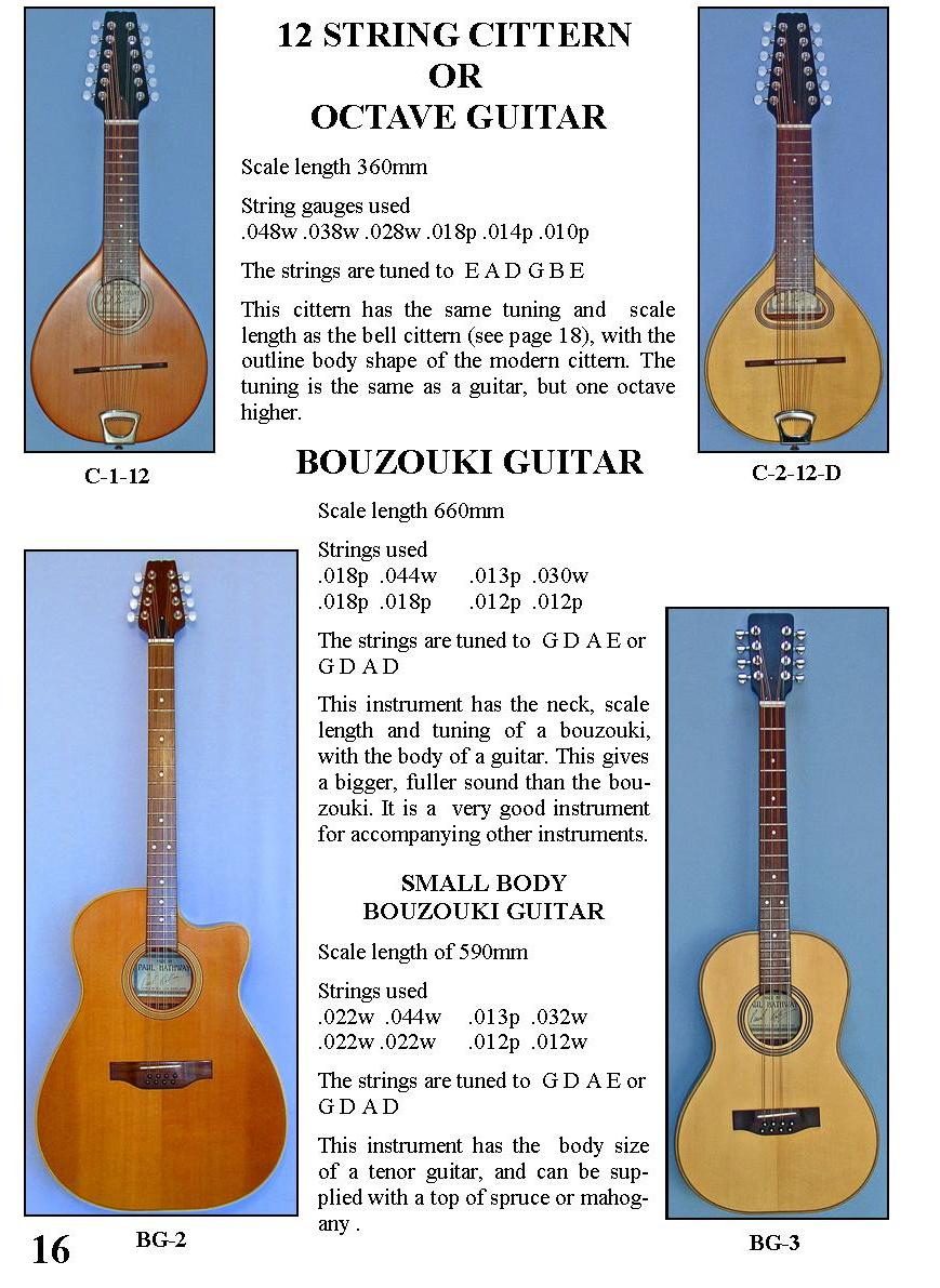 12 String Cittern or Octave Guitar